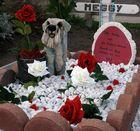 Tierfriedhof 2 - unter Rosen gebettet!!