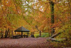 Tiergarten 2
