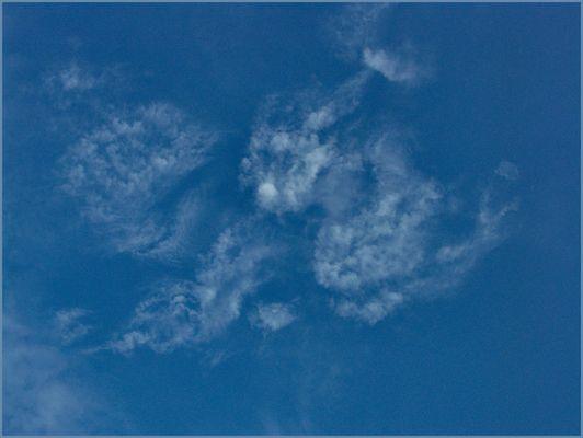 Tierische Wolken