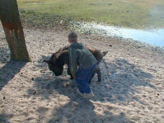 Tierliebe nicht immer ohne Folgen...Puh Glück gehabt...