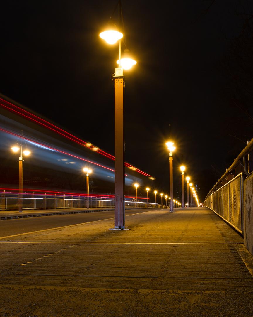 Tierpark-Brücke bei Nacht 1