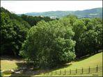 Tierpark im Odenwald