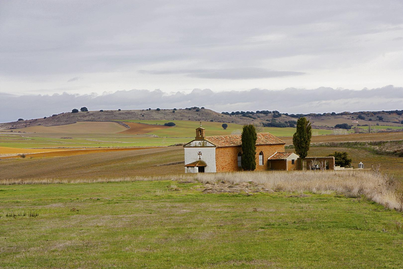 Tierra de Campos 8