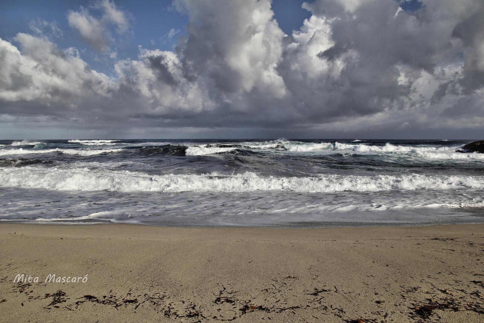 Tierra, mar y aire.
