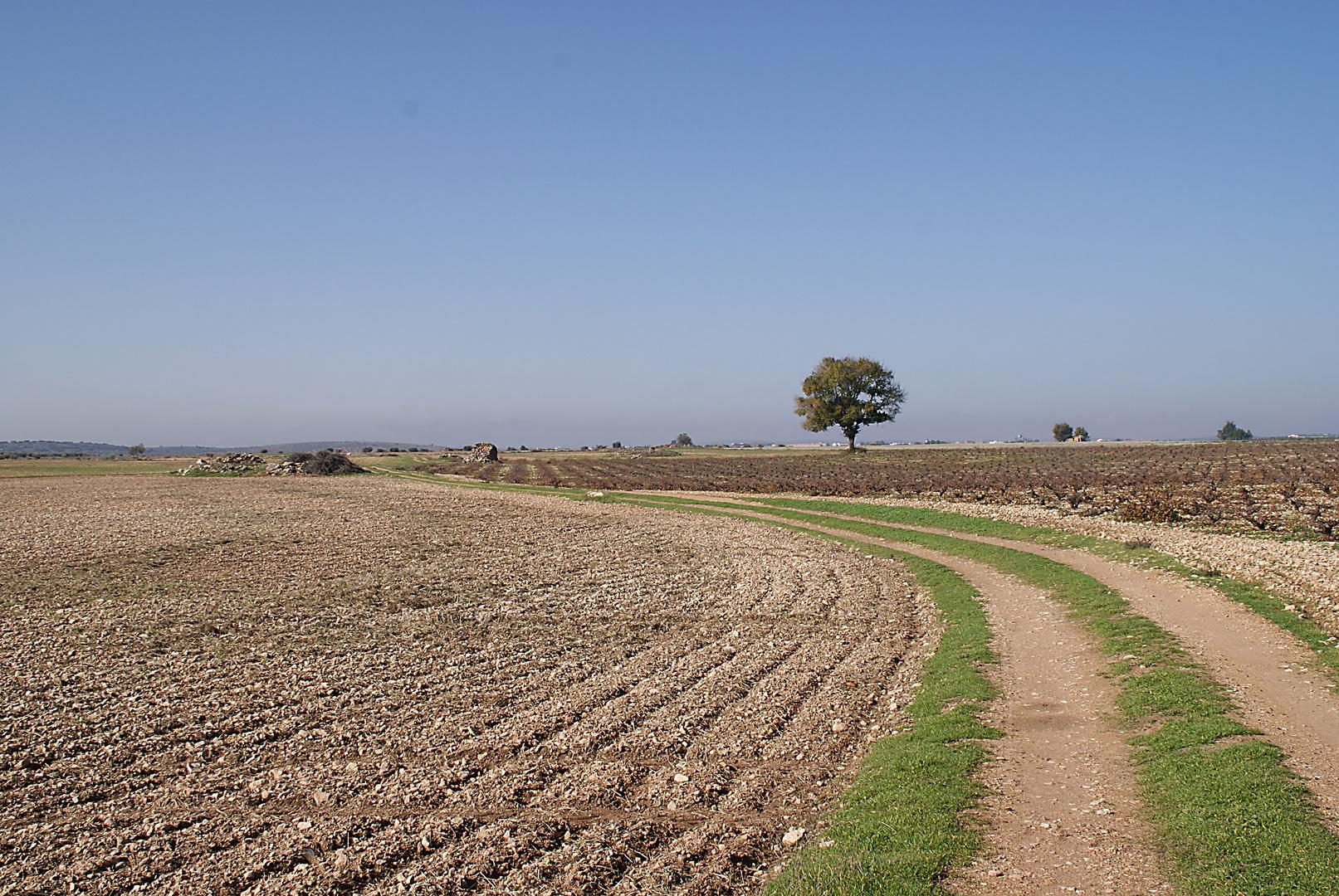Tierras Manchegas