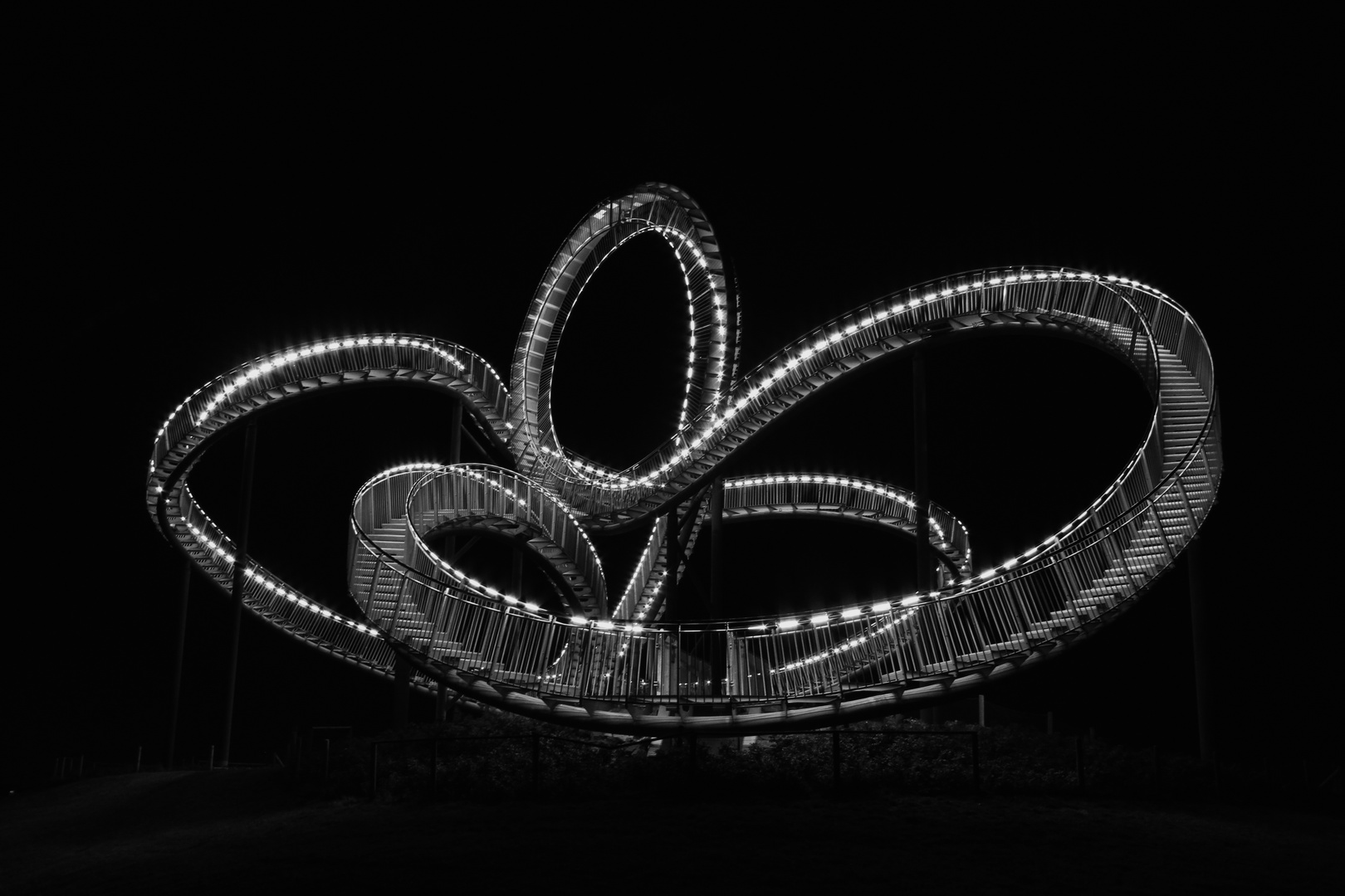 Tiger and Turtle II