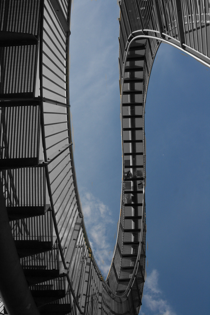 Tiger and Turtle2