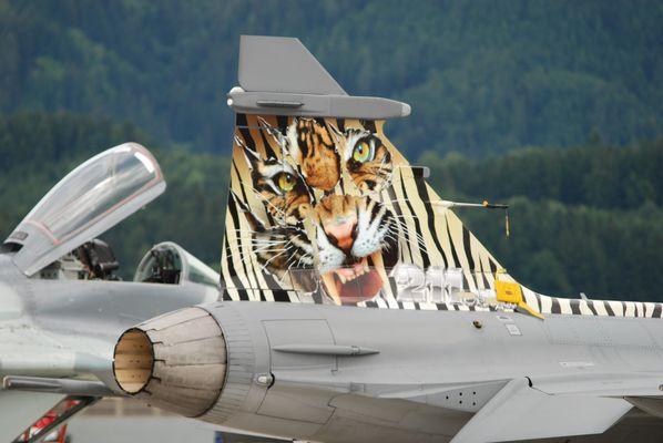 Tiger Gripen
