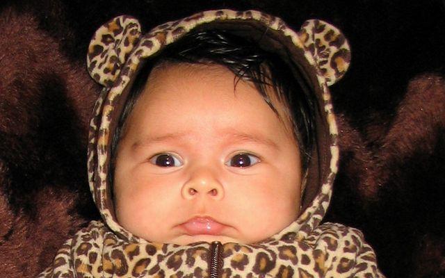 Tiger Lilly äh ne Leoparden Leonie