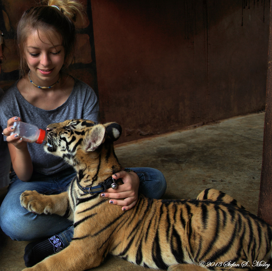Tiger Mama!