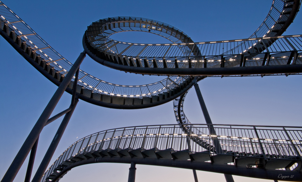 Tiger & Turtle 3