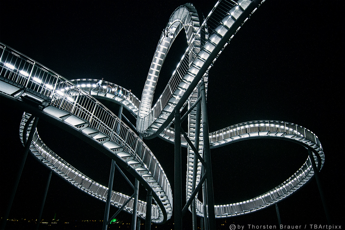 Tiger & Turtle 4