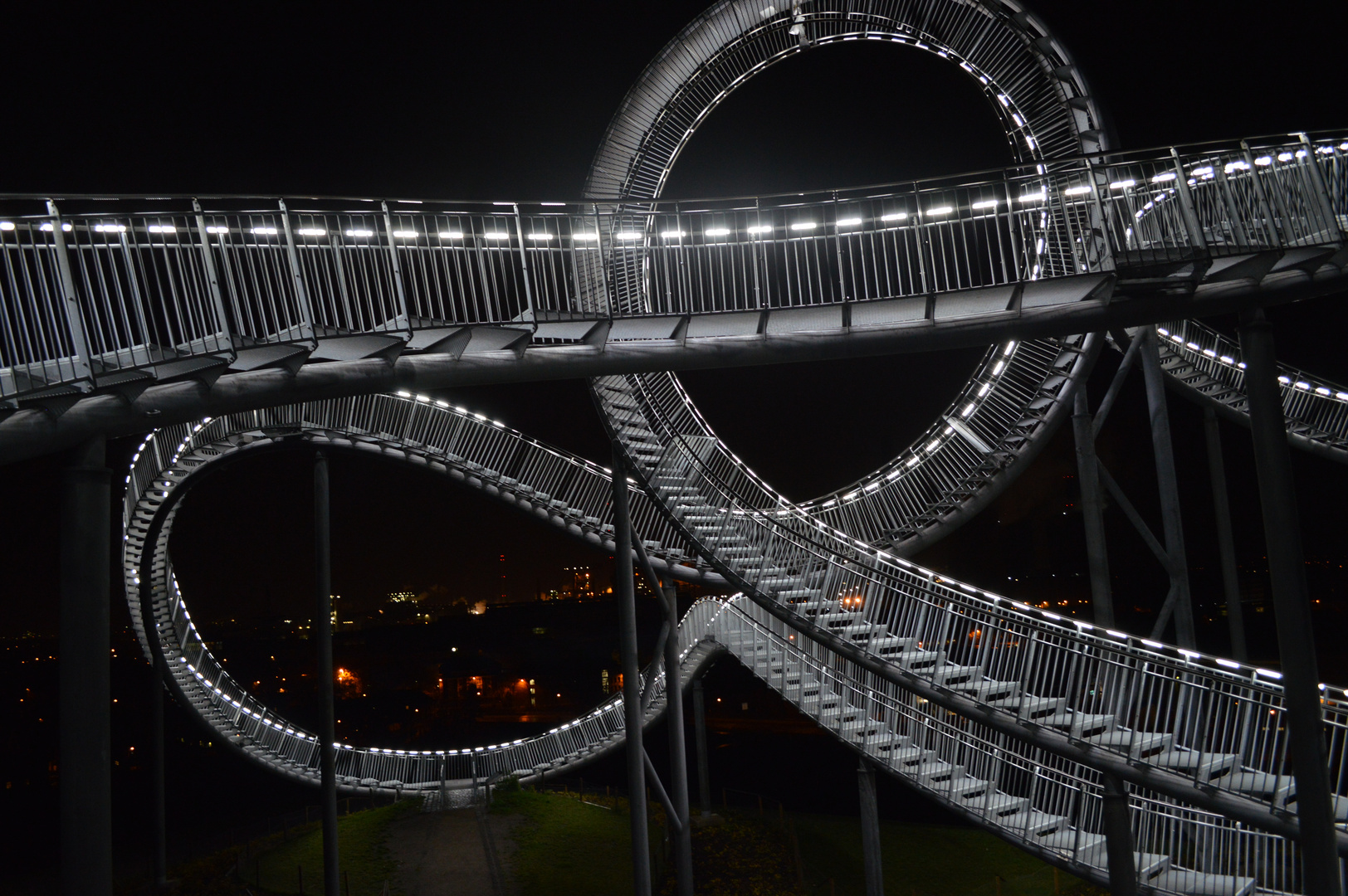 Tiger& Turtle