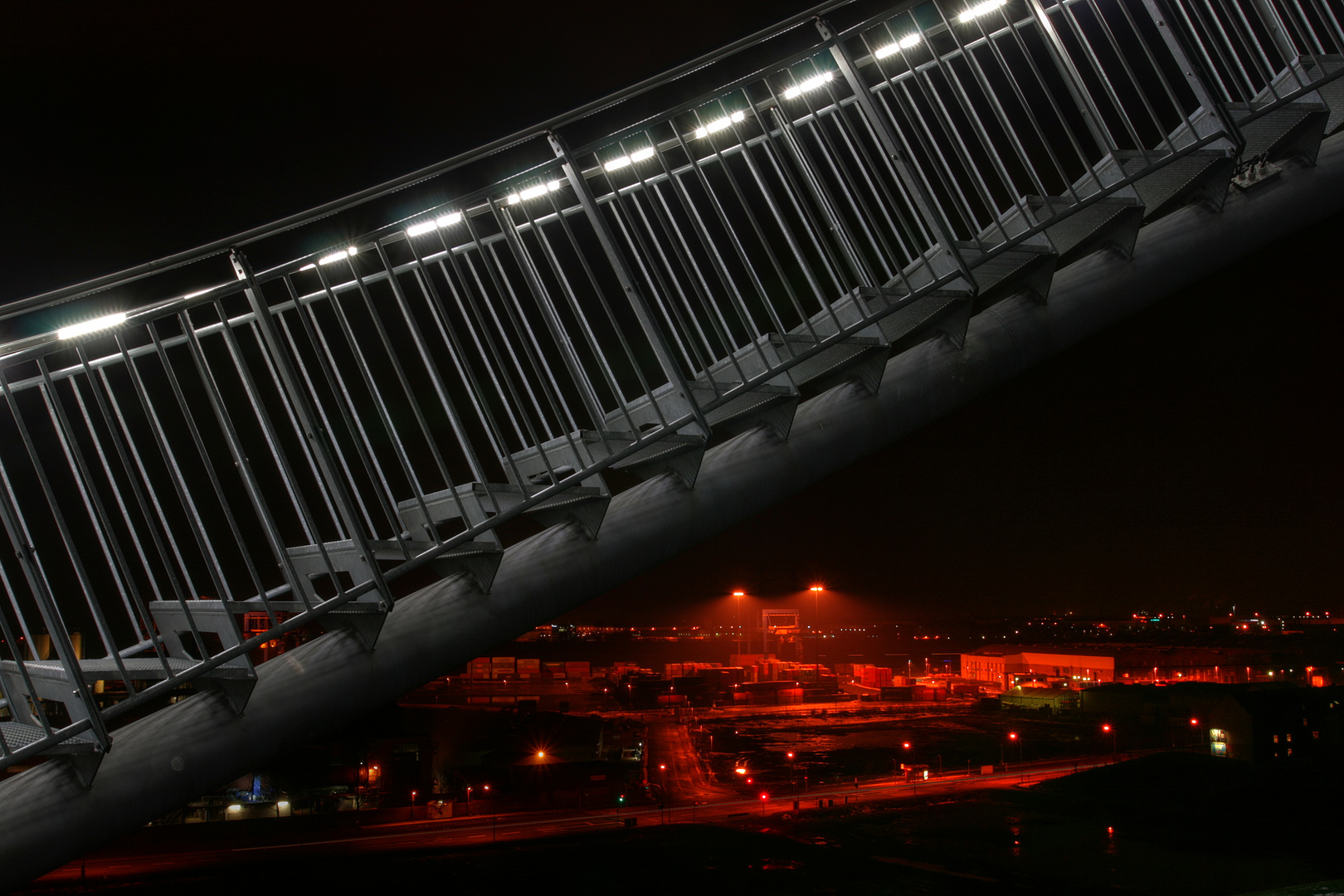 Tiger & Turtle & Rot