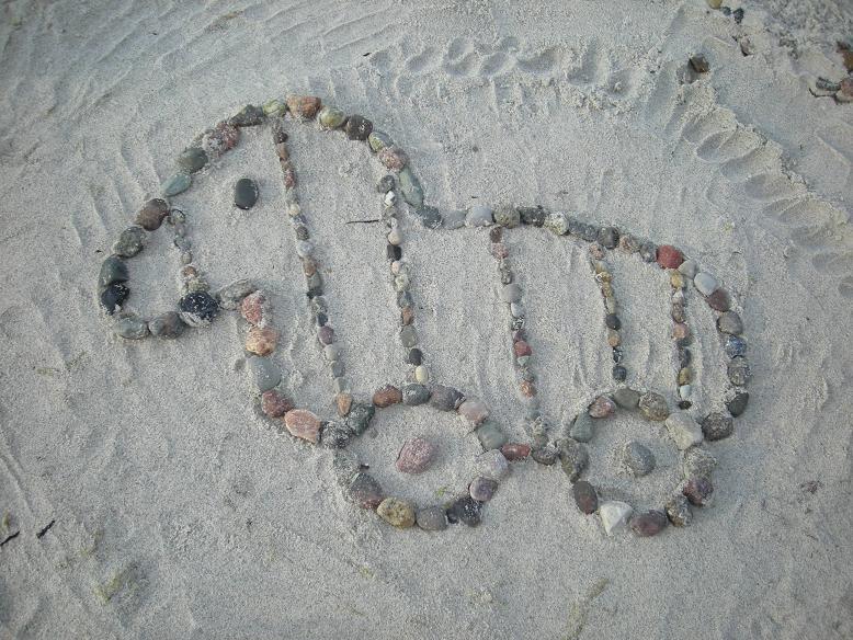 Tigerente am Strand