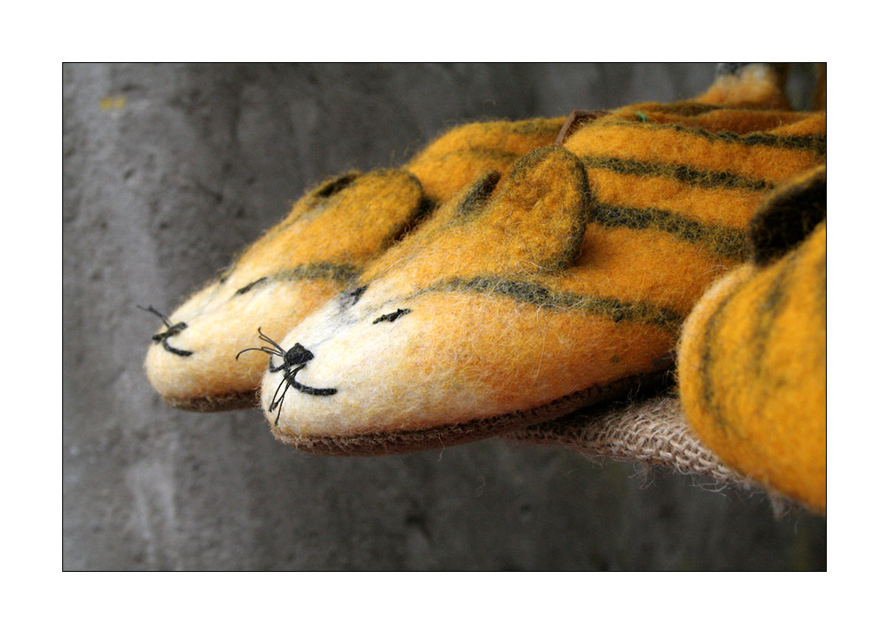TigerPantoffel
