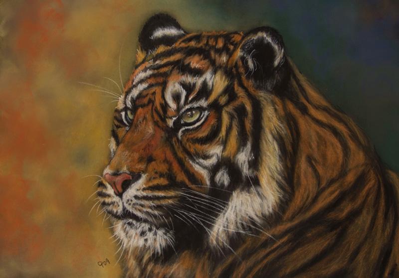 Tigerprofil