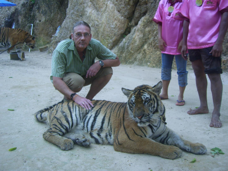 Tigertempel