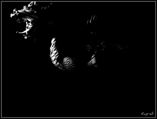 Tigre et Dragon #3