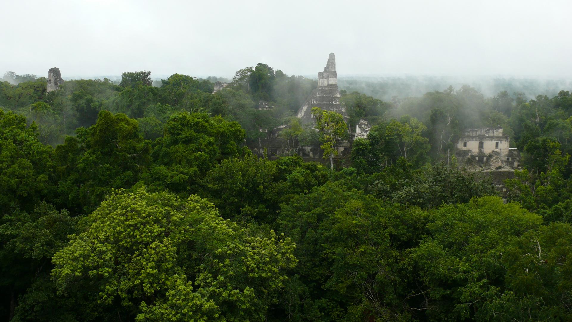 Tikal