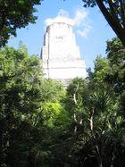 Tikal die Vierte