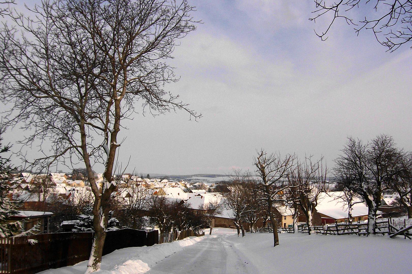Timmenrode im Schnee