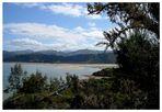 Tinline Bay - Abel Tasman NP