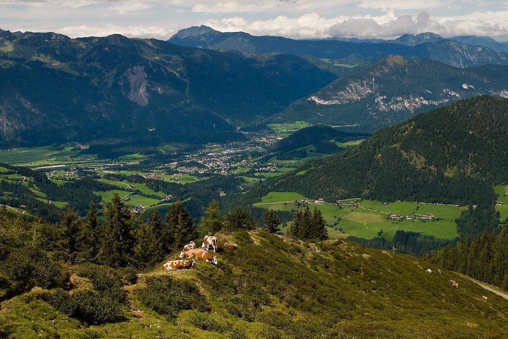 Tirol 47 - Wiedersberger Horn
