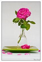 Tischschmuck mit Rose