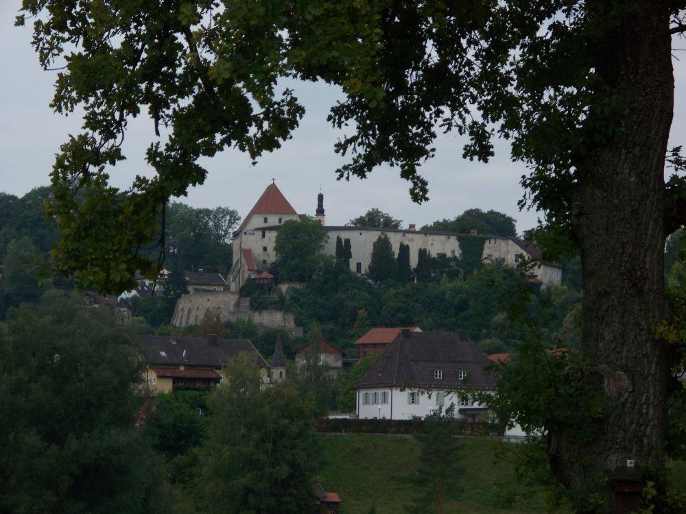Tittmoninger Burg