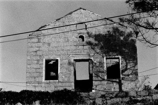 Tizzano, 1995.