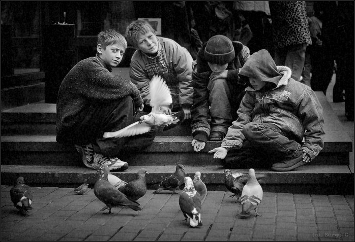 To feed pigeons