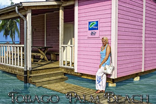 Tobago Palm Beach
