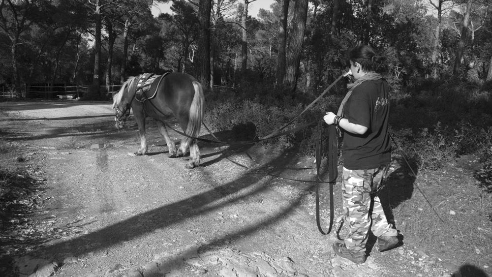 Tobby,travail aux longues rennes