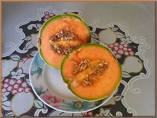 Today is yellow melon