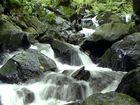 Todtnauer Wasserfall 2012