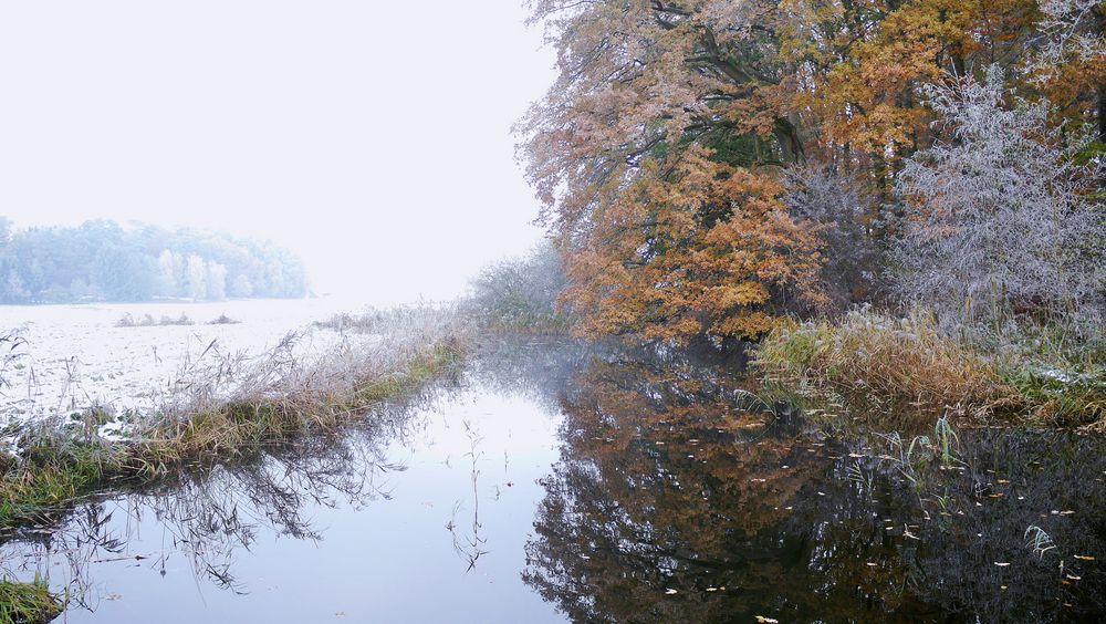 Tönnisbach im Herbstnebel