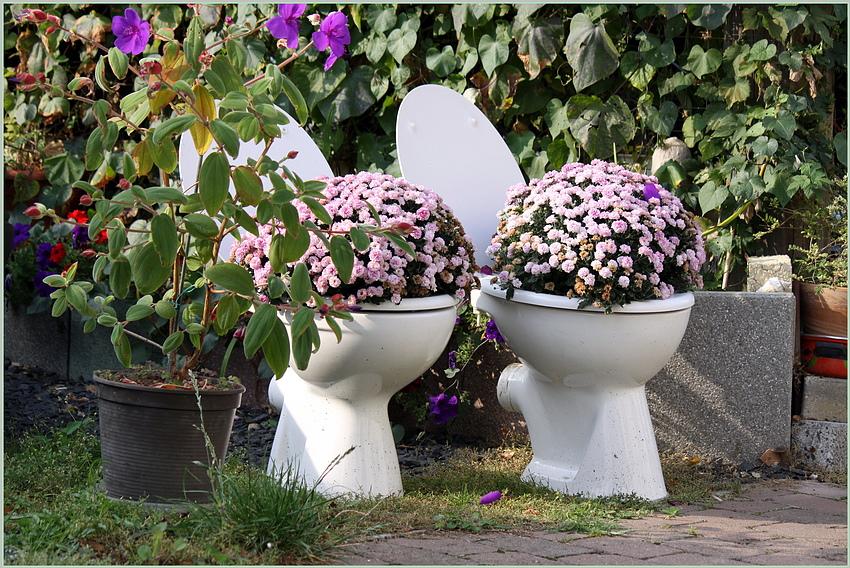Toilettenblumen