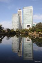 Tokio 12.2012