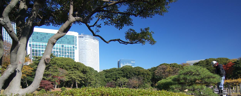 Tokio, Hamarikyu Garden