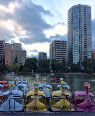 Tokyo 6 mauvais goût