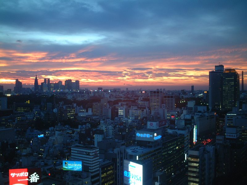 Tokyo from the Sanno Park Tower 21th Floor