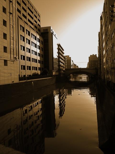 Tokyo im Wasser