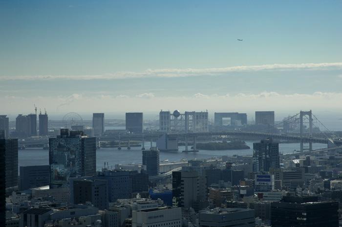 Tokyo in Blue