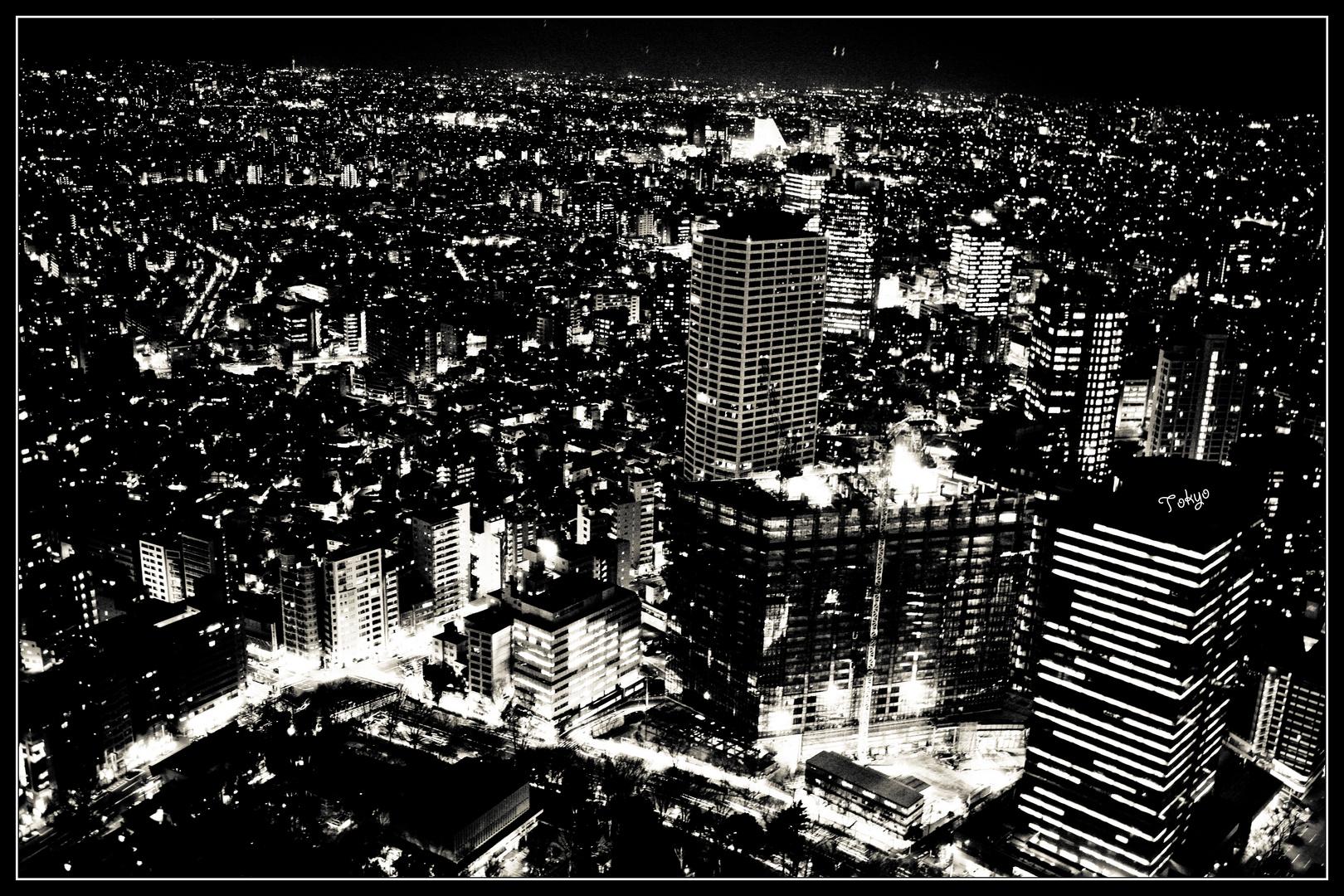 Tokyo night view b&w