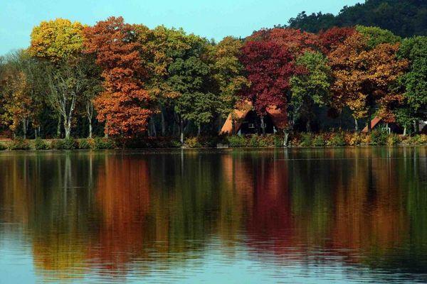 Tolle Herbststimmung