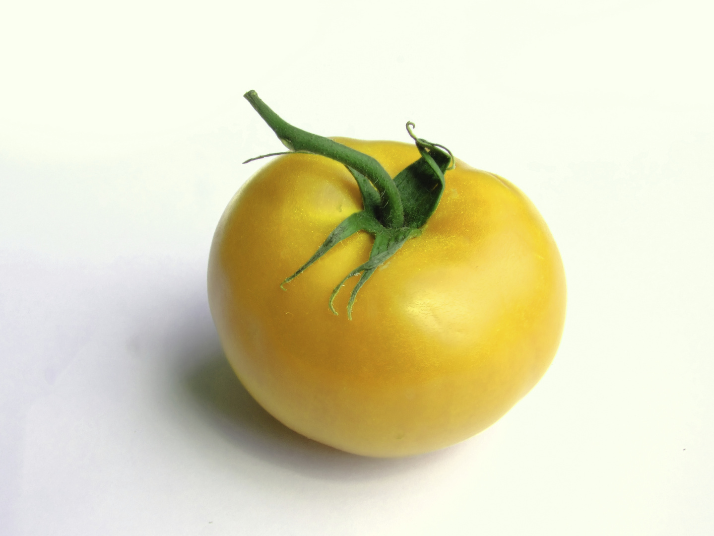 Tomate in gelb