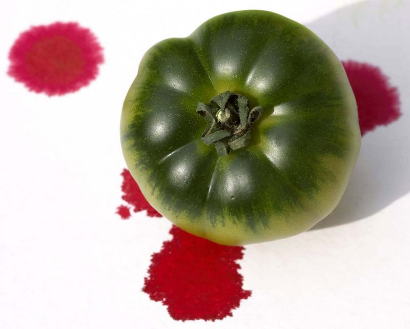 Tomate in Rot