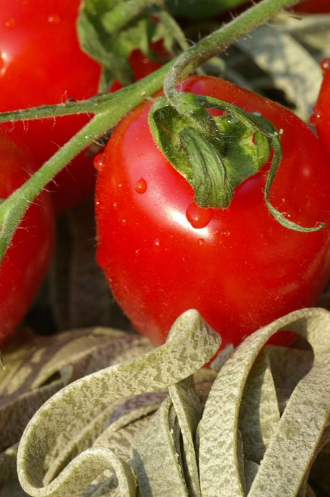 Tomate mit Bandnudel