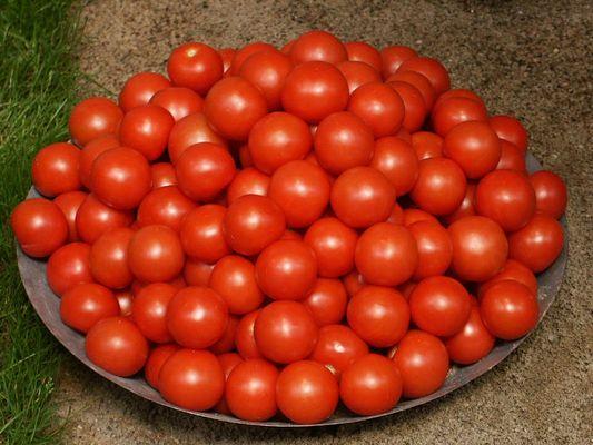 Tomaten.....